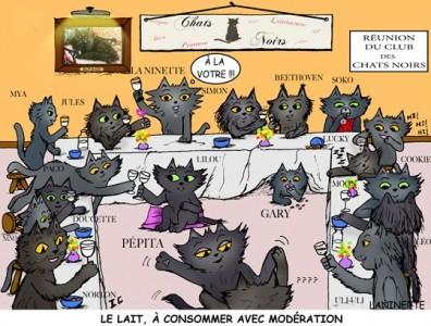 club-des-chats-noirs