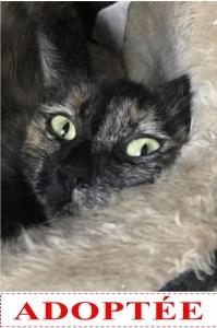 melaine-adoptee