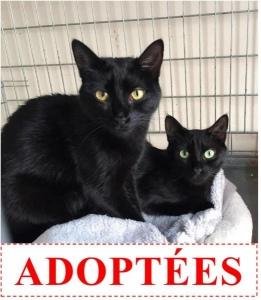 natacha-et-ninon-adoptees